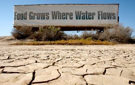 California Overcomes Drought