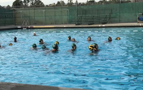 The Girls Varsity Water Polo Team' Suffers Loss Against Wilson High School