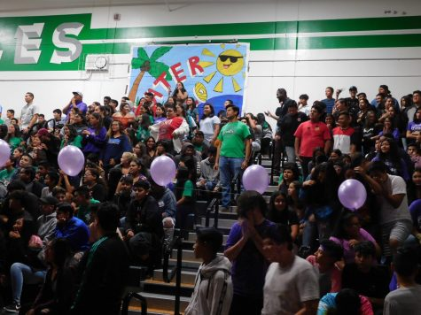 Nogales Sports Teams Presented at Rally
